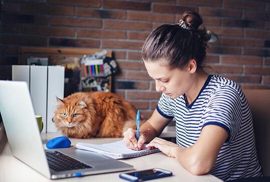 online__tutoring__img